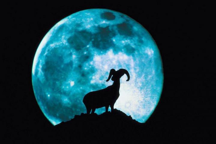 Mond und Anbau